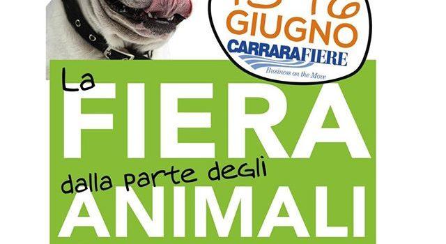 Atuttacoda Carrara Fiere